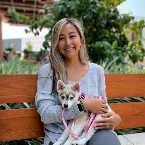 Alaskan Klee Kai Adoption- Enya
