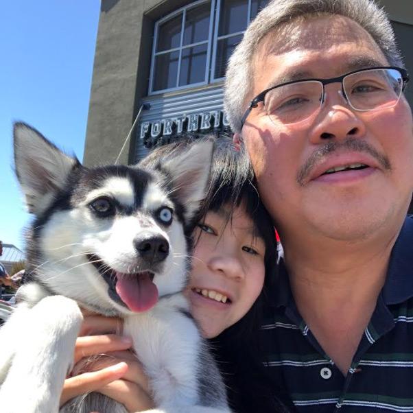 Alaskan Klee Kai Adoption - Victor